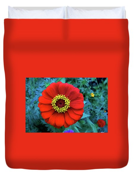 September Red Beauty Duvet Cover