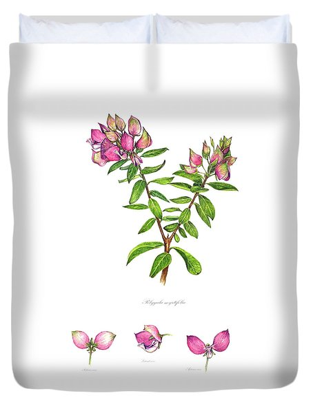 Duvet Cover featuring the painting Septemberbossie  Polygala Myrtifolia by Heidi Kriel