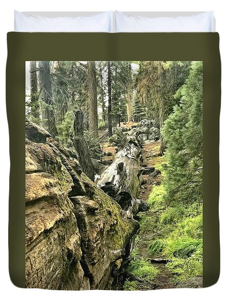 Sequoia Fallen Tree Duvet Cover