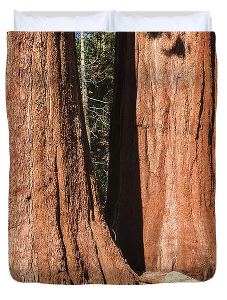 Sequoia Duvet Cover