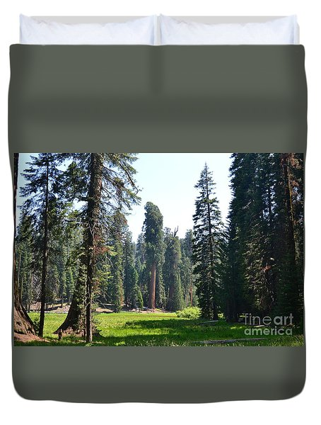 Duvet Cover featuring the photograph Sequoia National Forest by Laurianna Taylor