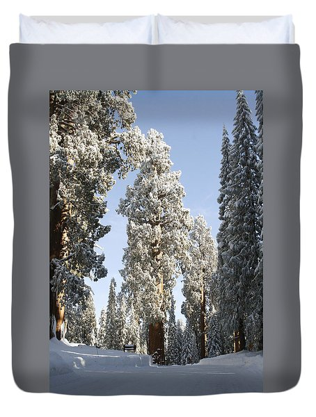 Sequoia National Park 4 Duvet Cover