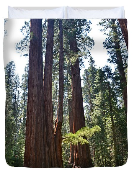 Duvet Cover featuring the photograph Sequoia National Park by Laurianna Taylor