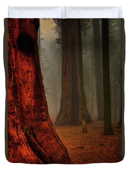 Sequoias In The Clouds Duvet Cover