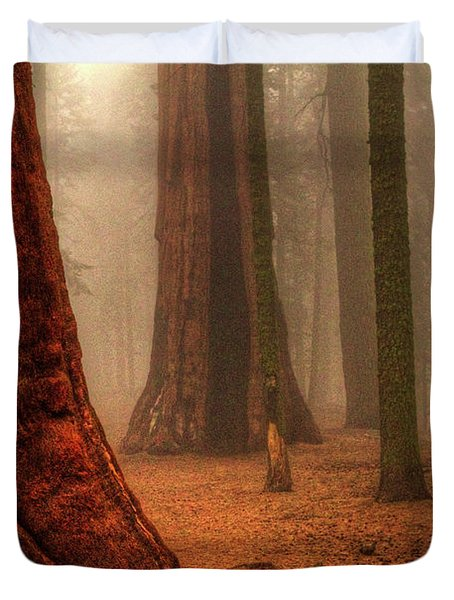 Sequoias Touching The Clouds Duvet Cover