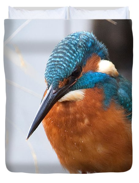 Serious Kingfisher Duvet Cover