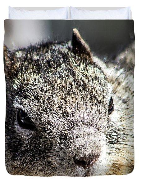 Serious Squirrel Duvet Cover