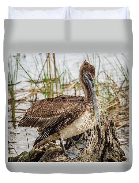 Settling Pelican Duvet Cover