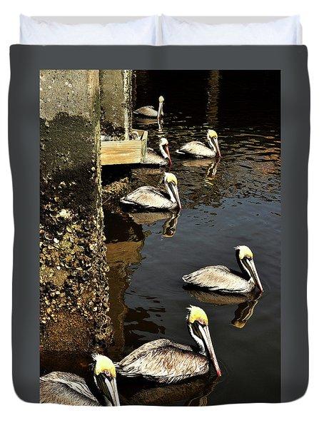 Seven Pelicans Duvet Cover