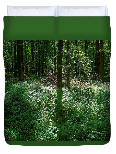 Shadow And Light In A Forest Duvet Cover