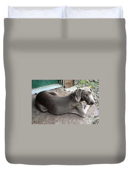 Shadow At Cabin Duvet Cover