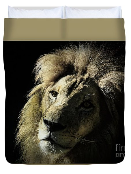 Shadows Duvet Cover by Lisa L Silva