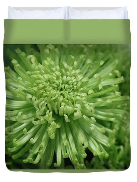 Duvet Cover featuring the photograph Shamrock Spider Mum by Living Color Photography Lorraine Lynch