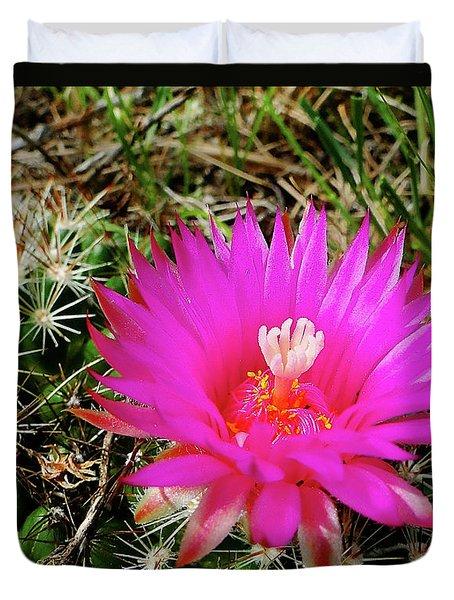 Duvet Cover featuring the photograph Pincushion Cactus - Coryphantha Vivipara by Blair Wainman