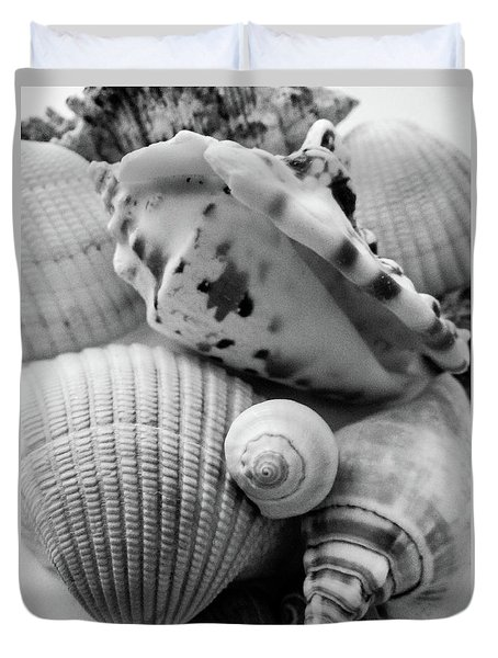 She Sells Seashells Duvet Cover by Julia Wilcox