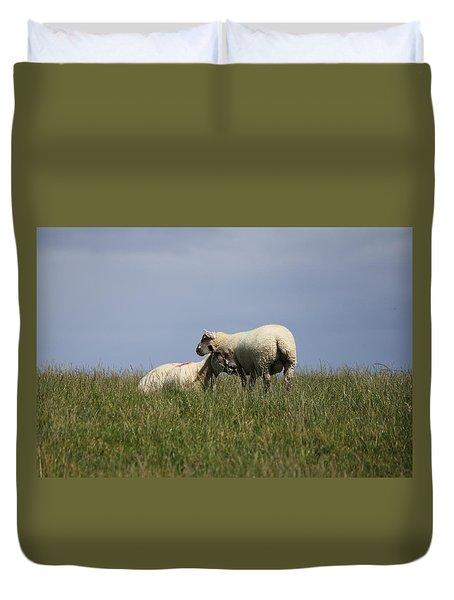 Sheep 4221 Duvet Cover