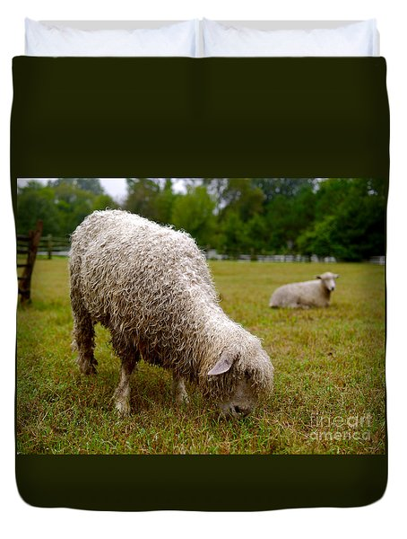 Sheep Begin A New Day Duvet Cover