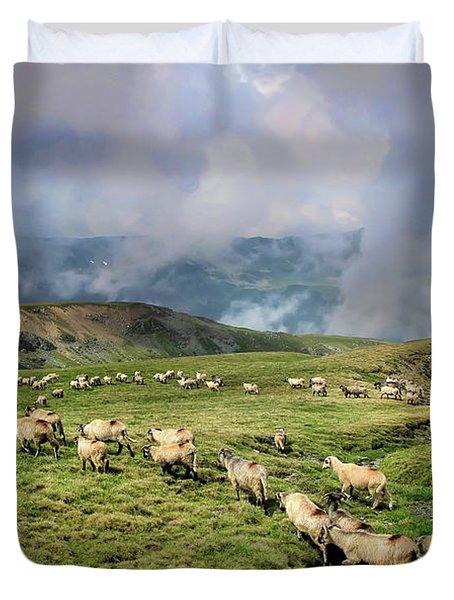 Sheep In Carphatian Mountains Duvet Cover