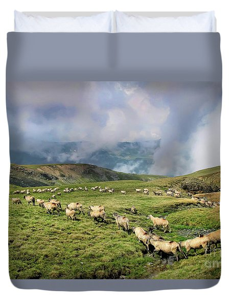 Sheep In Carphatian Mountains Duvet Cover