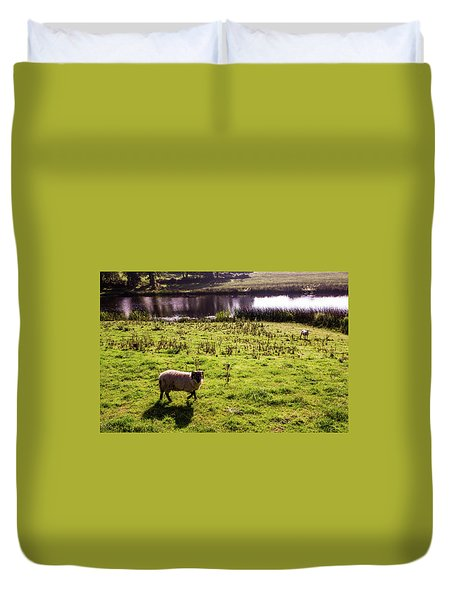 Sheep In Eniskillen Duvet Cover