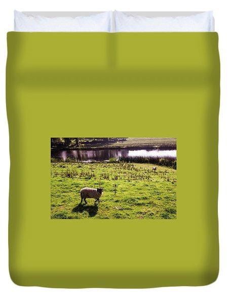 Sheep In Eniskillen Duvet Cover