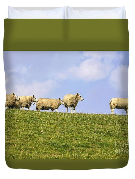 Sheep On Dyke Duvet Cover by Patricia Hofmeester