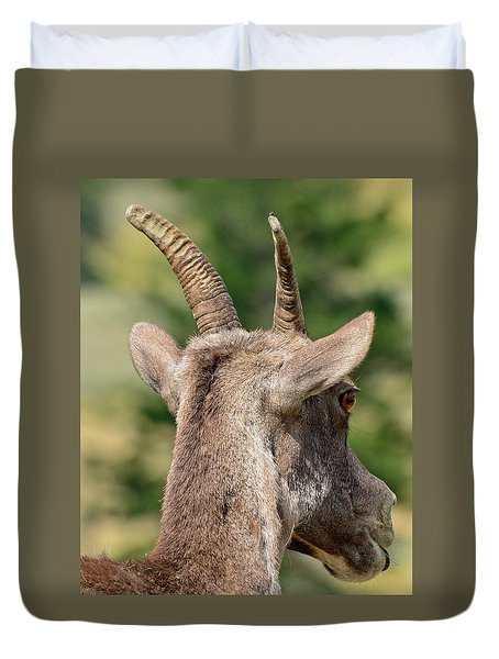 Duvet Cover featuring the photograph Sheepish Look by Bruce Gourley