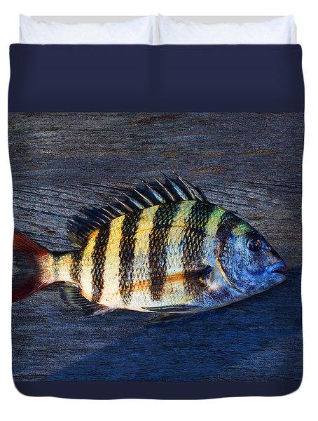 Duvet Cover featuring the photograph Sheepshead Fish by Laura Fasulo