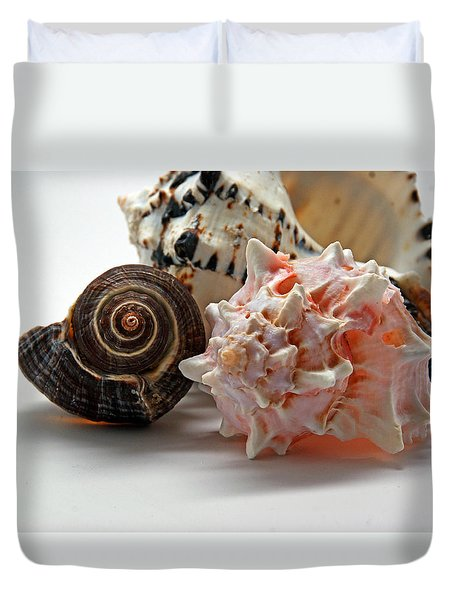 Duvet Cover featuring the photograph Shell Grouping by Lynda Lehmann