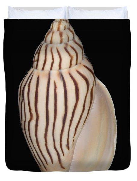 Shell Pattern - Bw Duvet Cover by Bill Brennan - Printscapes