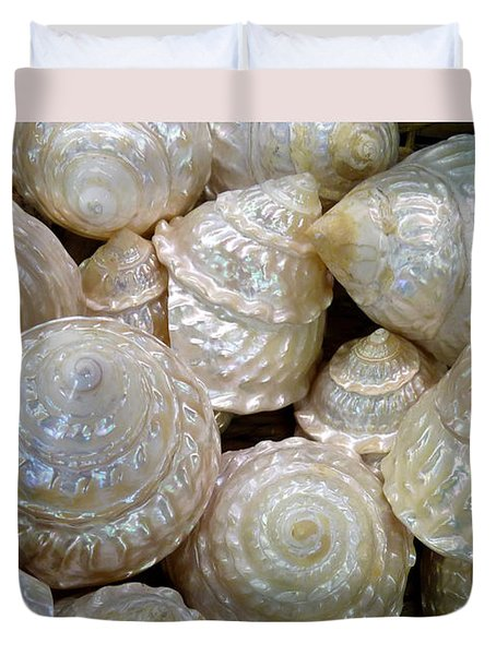 Shells - 4 Duvet Cover