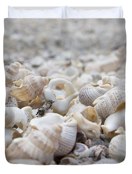 Duvet Cover featuring the photograph Shells 1 by Jocelyn Friis