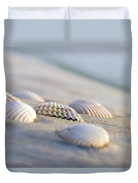 Shells  Duvet Cover by Peter Tellone