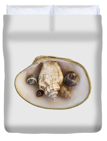 Shells Within A Sea Shell Duvet Cover