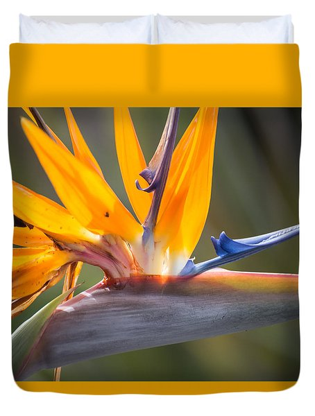 Duvet Cover featuring the photograph Shocktop by Julie Andel
