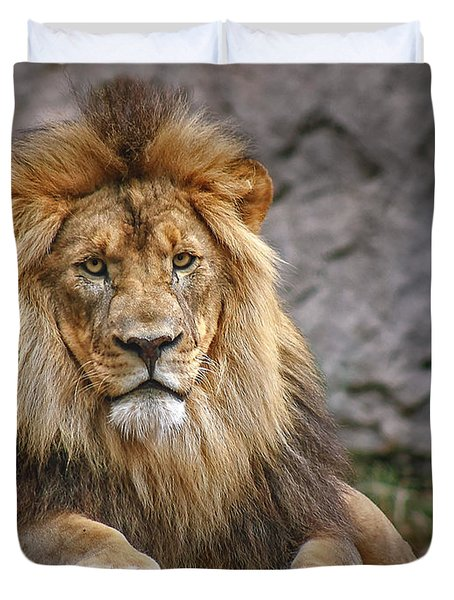 Duvet Cover featuring the photograph Shombay by Elaine Malott