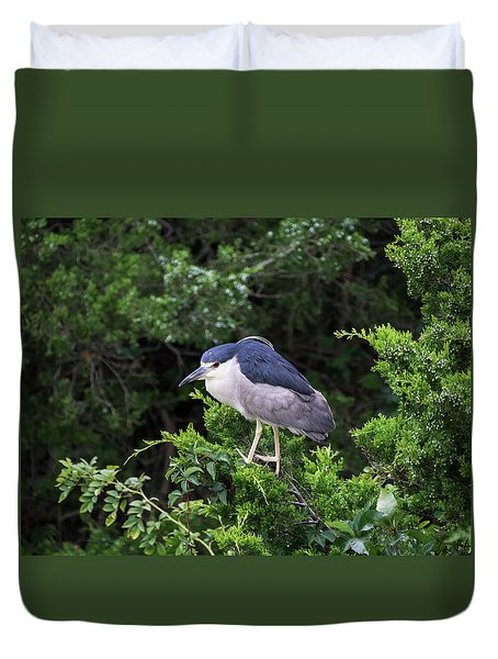 Shore Bird Roosting In A Tree Duvet Cover