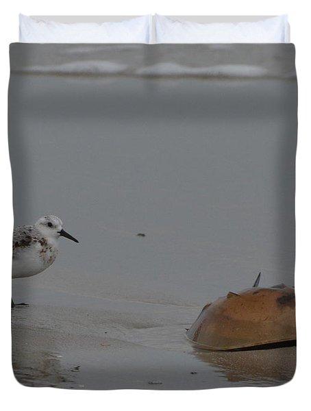 Shorebird And A Crab Duvet Cover