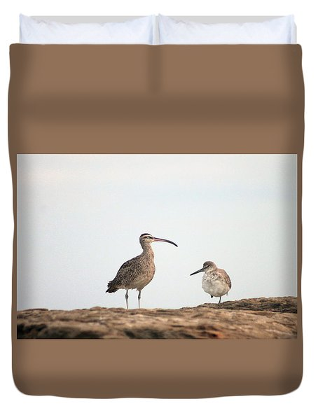 Duvet Cover featuring the photograph Shorebirds Of Windansea Beach by Bruce Patrick Smith