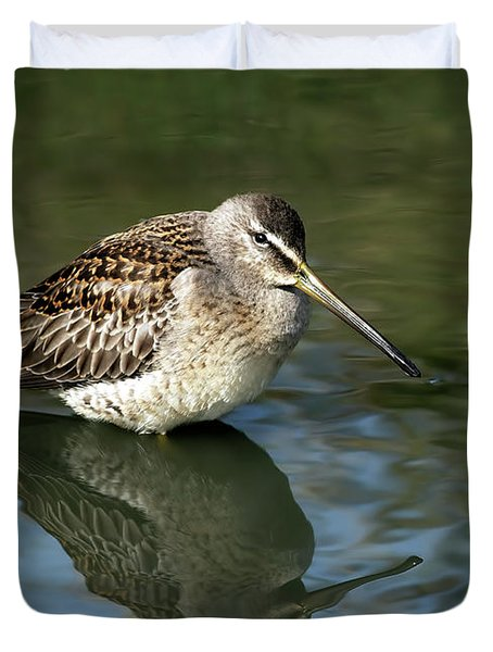 Duvet Cover featuring the photograph Short-billed Dowitcher by Sharon Talson