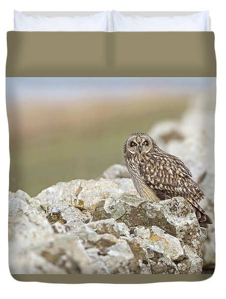 Short-eared Owl In Cotswolds Duvet Cover