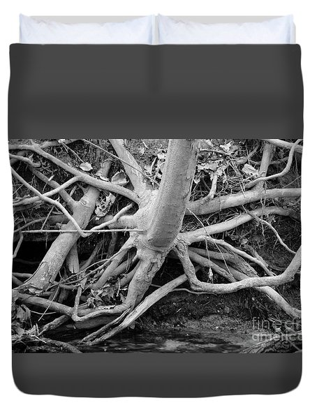 Showing It's Roots Duvet Cover by Sandra Church