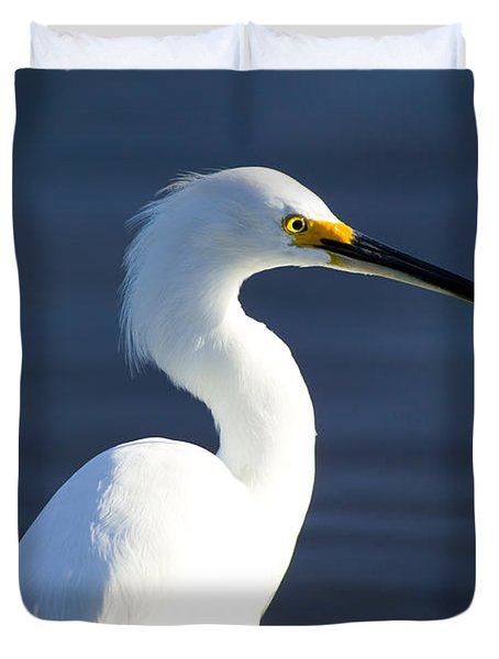 Showy Snowy Egret Duvet Cover by Rich Franco