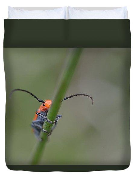 Shy Beetle Duvet Cover