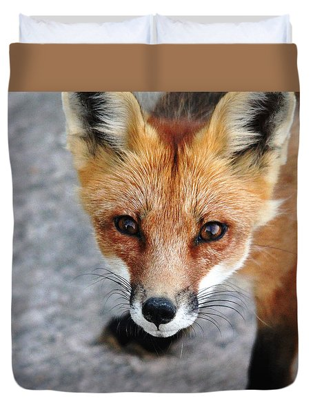 Duvet Cover featuring the photograph Shy Red Fox  by Debbie Oppermann