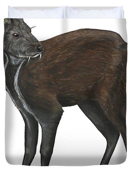 Duvet Cover featuring the painting Siberian Musk Deer Moschus Moschiferus - Chevrotain Porte-musc - Ciervo Almizclero - Moschustier by Urft Valley Art