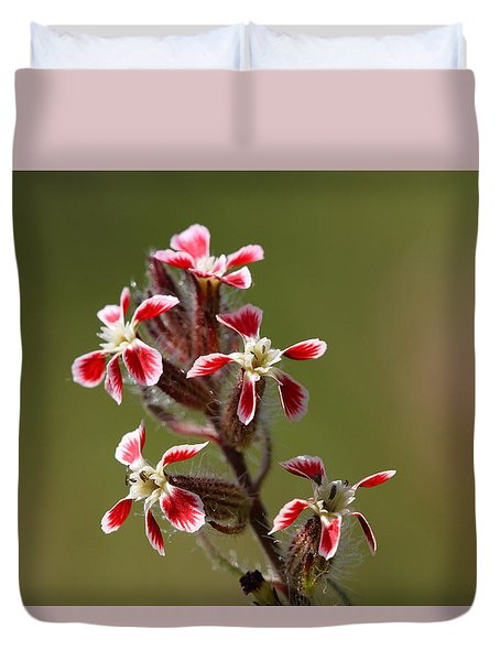 Duvet Cover featuring the photograph Silene by Richard Patmore
