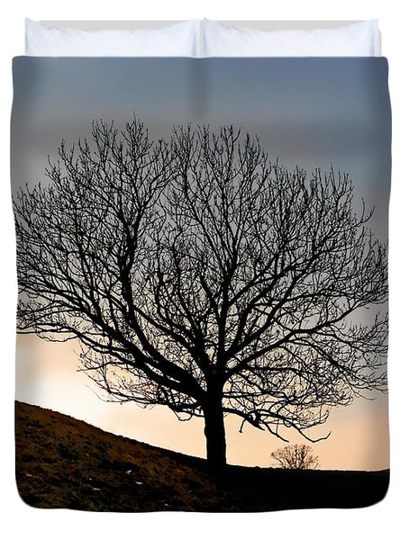 Silhouette Of A Tree On A Winter Day Duvet Cover by Christine Till