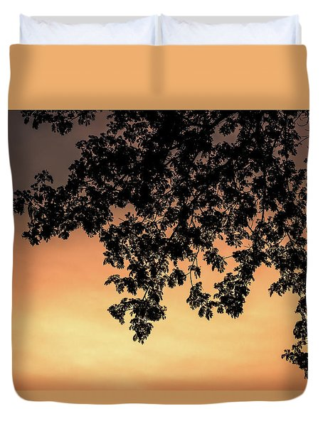 Silhouette Tree In The Dawn Sky Duvet Cover by Jingjits Photography