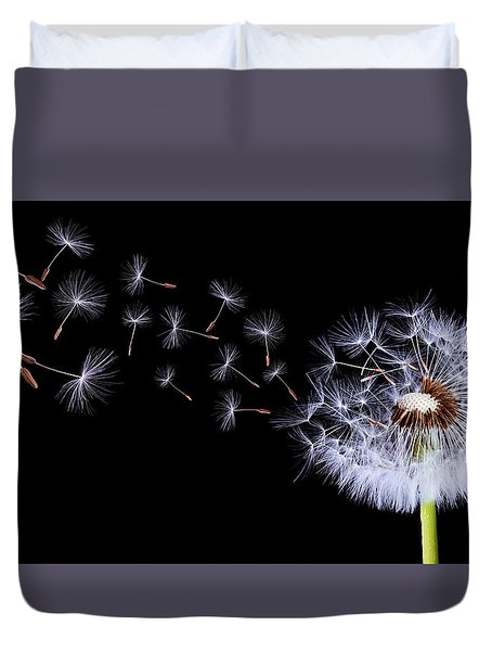Silhouettes Of Dandelions Duvet Cover by Bess Hamiti